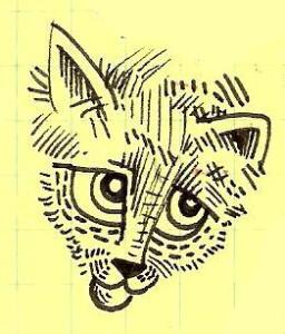 Wistful cat